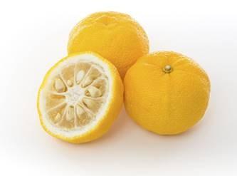 Frutatua Yuzu